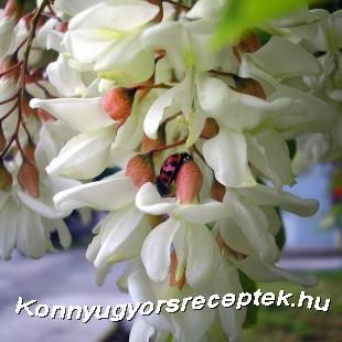 Akácvirág szörp tartósítószer nélkül recept